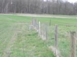 Brachfläche der Schlammgrube Luckau, ebenfalls Grundwassermeßstelle 2